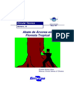 Abate de Árvores de Floresta Tropical.pdf