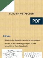 bilirubinmetabolism-161101141346
