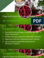 Organisasi Dalam Manajemen Hutan-kul 4 Dan Kul 5 Update 2018