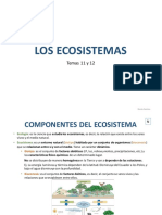 Tema 11 y 12 Los Ecosistemas. Naturales.1º ESO