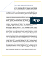 Traduccion Redes Estuarinas