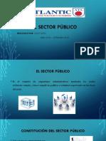 El Sector Publico
