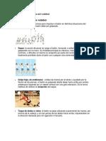 Los Elementos Tecnicos Del Voleibol
