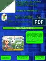 Clase 10_plan de Manejo Ambiental