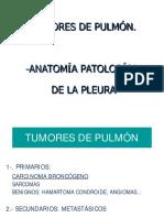 AP Cancer de Pulmón