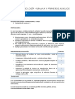01 TareaA Anatomofisiologia Humana y Primeros Auxilios