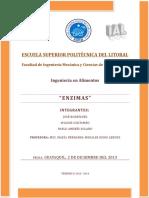 GT1 ENZIMAS