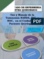 Uso y Manejo de la Taxonomia NANDA, NIC y NOC