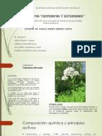 """""""Compuestos terpenicos y esteroides"""".pdf"""