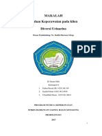 4. DIVERSI URINARIUS.docx