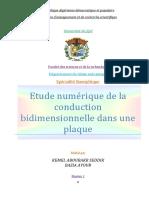 La-conduction-bidimensionnelle-dans-une-plaque.docx