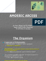 Amoebic Liver Abcess 04