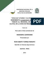 Roni Tesis Titulo 2013