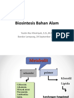 Biosintesis Bahan Alam-1.pptx