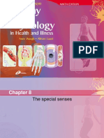 Chapter 8 The Special Senses.ppt
