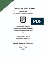 Análisis Comparativo Uso de Bambú vs. Perfiles de Acero Para Cobertura Liviana