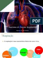 Anatomia EF 2013 Módulo Anatomia Respiratório