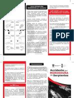 Accidente ofídico TRIPTICO.pdf