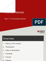 Topic 7 - The Derivative Market(1)