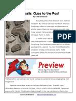 5th Types of Rocks