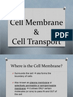 unit 2 - cell transport notes