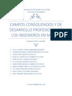 Campos Consolidados y de Desarrollo Profesional de Los Ingenieros en México