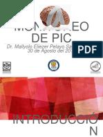 Monitoreo PIC Colegio Potosino