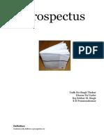 Prospectus DPY