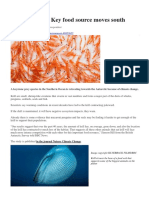 Antarctic Krill - Antarctic keystone species being pushed South by climate change