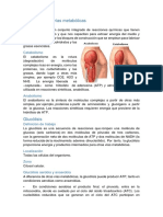 Diabetes y Complicaciones Metabolicas