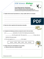 Asexual Reproduction Worksheet BoardWorks