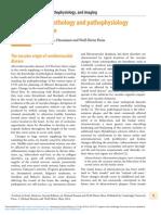 Neuropathology and Pathophysiology of Stroke