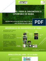 Directrice s Diagnostico Rabia