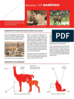 articles-5037_archivo_.pdf