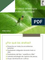 2.2 - EvaluacionDiferentesAranasEnControlDiaphorina.pdf