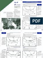 ct211-rfebm_la-continuidad-en-el-ataque-posicional-2-parte-manuel-laguna_barbolax.pdf
