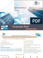 SAP Business One ERP Partner
