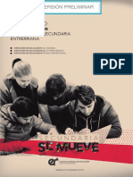 Versión Preliminar - Plan Estratégico