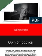 Opinión Pública