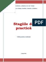 ghidul stagiului de practica