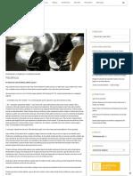 Paciência – Schoenstatt.org.pdf