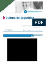 Cultura de Seguridad.vitoLO F
