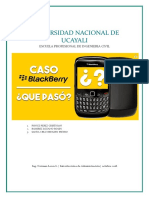 TRABAJO CASO BLACKBERRY