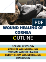 woundhealingofcornea-160912145044