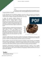 Paleolítico Inferior i (Early Stone Age i) - Cultura Olduvaiense