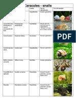 Caracoles - Tipos de Reproducción