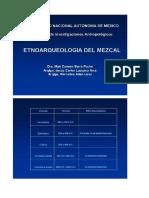 Etnoarqueologia Del Mezcal