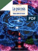 La psicosis_ Ideas sobre la locura  - Vicente Molina Rodríguez.pdf