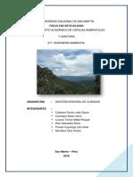 Descripcion de Rumiyaku Cuenca-Moyobamba