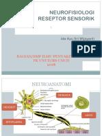 reseptor sensorik ppt